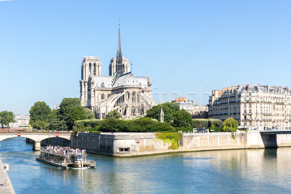 Cathedral Notre Dame Paris with cruise Stock photo © vichie81