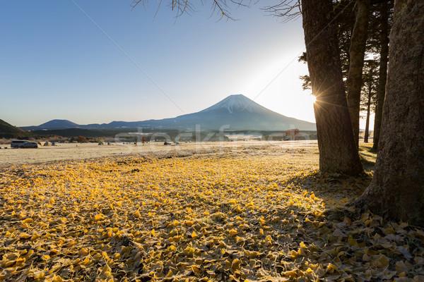 Monte Fuji nascer do sol neve inverno legal Ásia Foto stock © vichie81