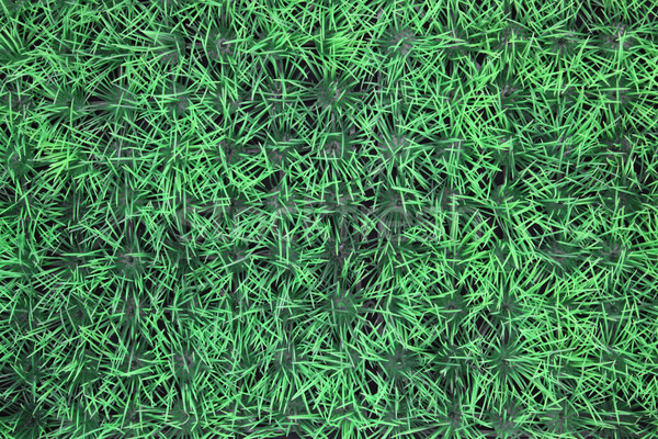 fake grass background Stock photo © vichie81