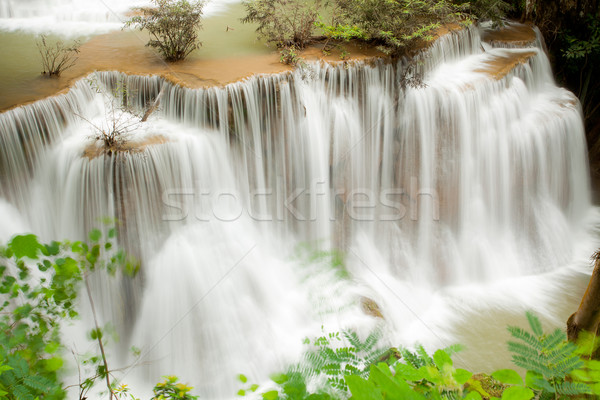 Tropical Rain forest waterfall Stock photo © vichie81
