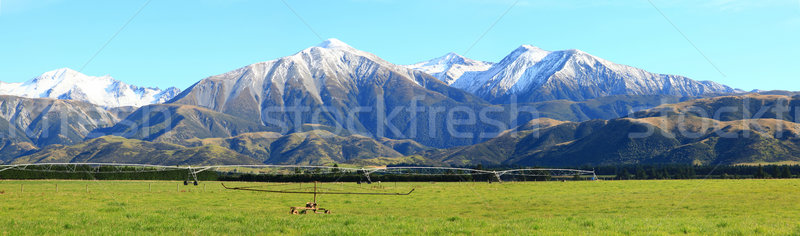 southern alps panorama Stock photo © vichie81