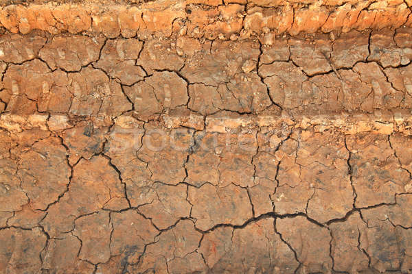 Dry terrain ground Stock photo © vichie81