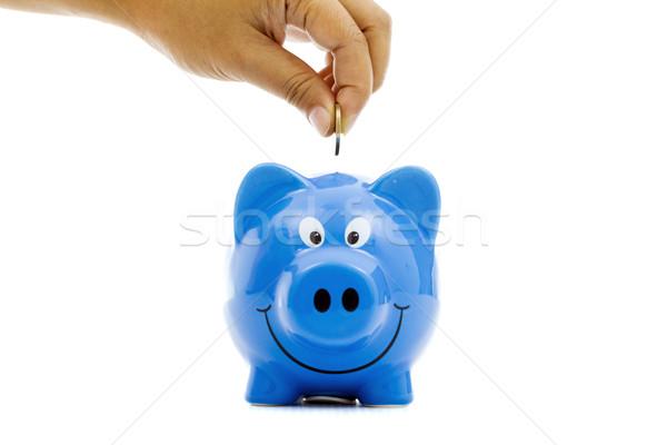 Persely pénz takarékosság kék persely üzlet Stock fotó © vichie81