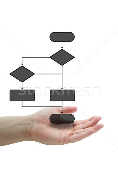 Décision diagramme main tenir affaires Photo stock © vichie81