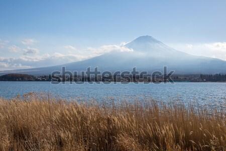 Lago Giappone montagna fuji campo primo piano Foto d'archivio © vichie81