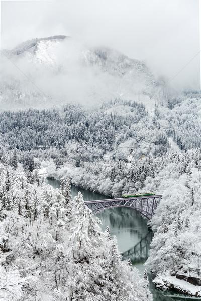 Сток-фото: зима · пейзаж · поезд · снега · покрытый · деревья