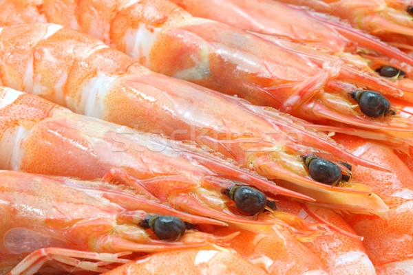 Shrimp cocktail background Stock photo © vichie81