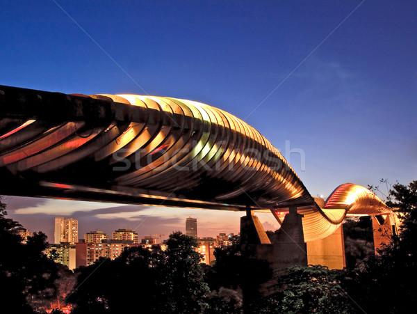 Singapore henderson wave bridge at dusk Stock photo © vichie81