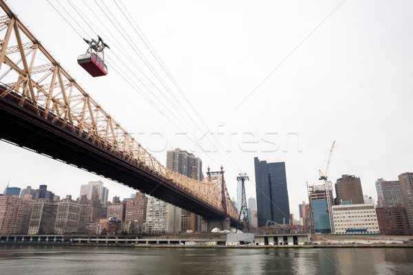 New York from Roosevelt island  Stock photo © vichie81