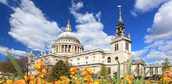 Foto stock: Catedral · jardim · panorama · flor · amarela · Londres · inglaterra