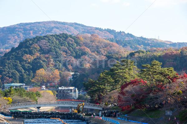 Ville kyoto bâtiment forêt japonais colline Photo stock © vichie81