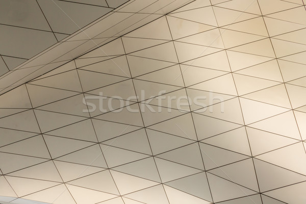 curving roof building Stock photo © vichie81
