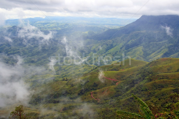 Mist on Mountain at Phu Thub Berg Thailand Stock photo © vichie81