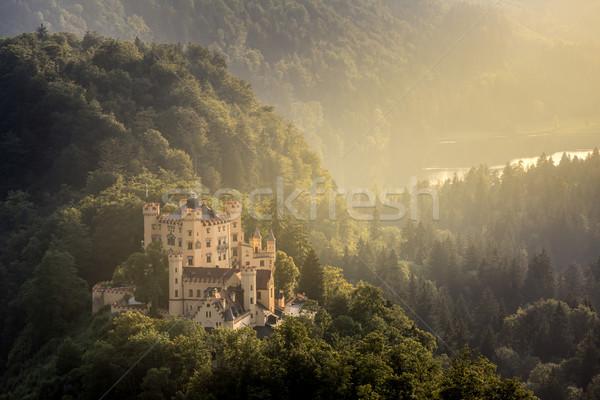 Hohenschwangau castle at Fussen Bavaria, Germany Stock photo © vichie81
