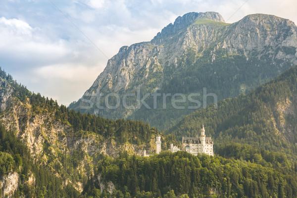 Neuschwanstein castle Germany Stock photo © vichie81