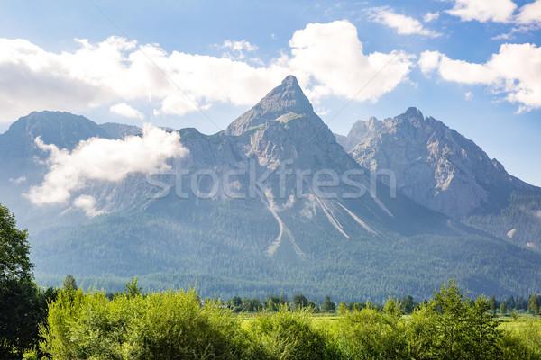 альпийский Альпы горные пейзаж Top Германия Сток-фото © vichie81
