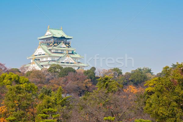 大阪 城 日本 秋 庭園 建物 ストックフォト © vichie81