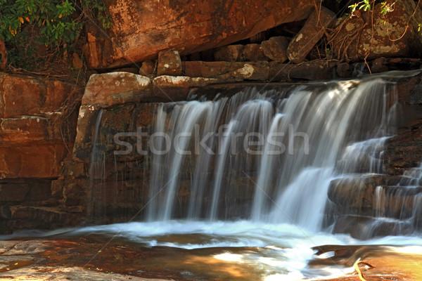 Tropikal çağlayan rainforest kuzey su yaprak Stok fotoğraf © vichie81