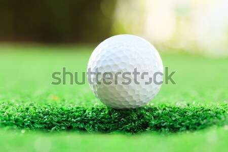 мяч для гольфа губа Кубок избирательный подход гольф спорт Сток-фото © vichie81