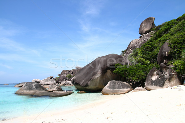 tropical beach Stock photo © vichie81