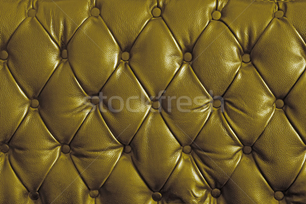 gold genuine leather Stock photo © vichie81