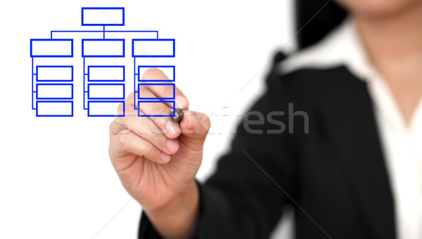 drawing business organization chart Stock photo © vichie81