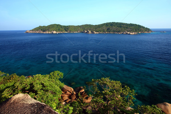 Aerial view of island Stock photo © vichie81