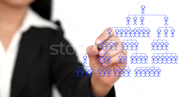 business organization chart Stock photo © vichie81