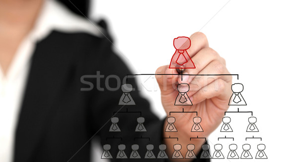 Business CEO Stock photo © vichie81