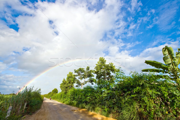 Pathway to Rainbow Stock photo © vichie81