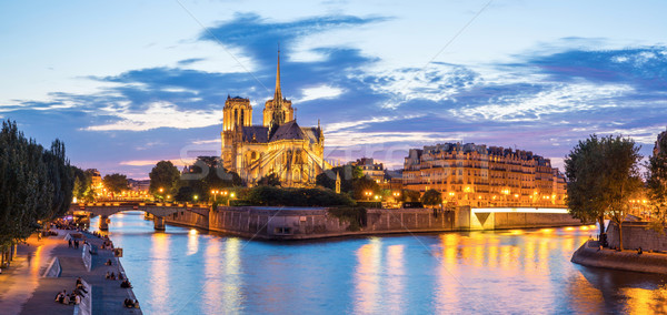 Notre Dame Cathedral Panorama Stock photo © vichie81