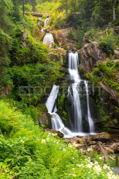 Triberg waterfalls  Stock photo © vichie81