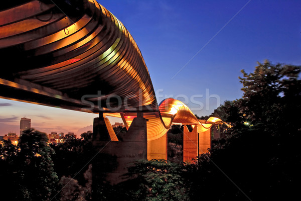 Singapore wave bridge Stock photo © vichie81
