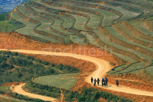Sapa hiking Stock photo © vichie81