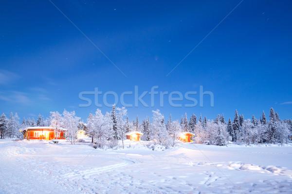 Winter landscape night Stock photo © vichie81