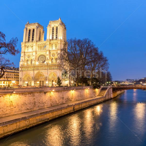 Paris dame crépuscule cathédrale champagne France Photo stock © vichie81