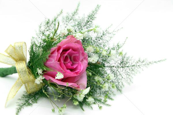 Naturalismo rosa vermelha prom dia dos namorados casamento dia Foto stock © vichie81