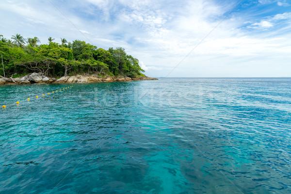 Snorkeling pont Phuket gyönyörű sziget tengerpart Stock fotó © vichie81