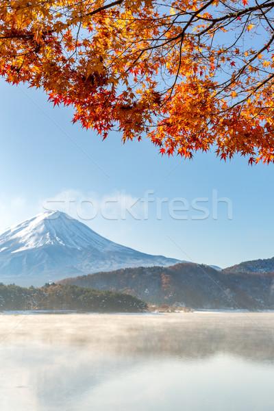 Mt. Fuji in autumn Japan Stock photo © vichie81