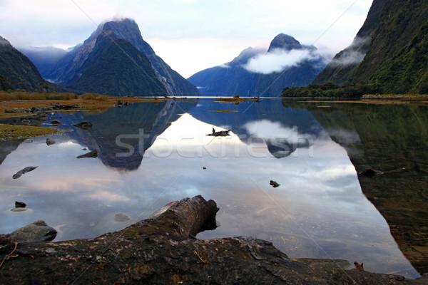 Soar Nova Zelândia paisagem alto montanha geleira Foto stock © vichie81