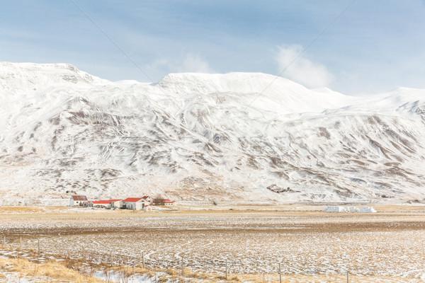 Foto d'archivio: Islanda · inverno · panorama · neve · montagna · albero
