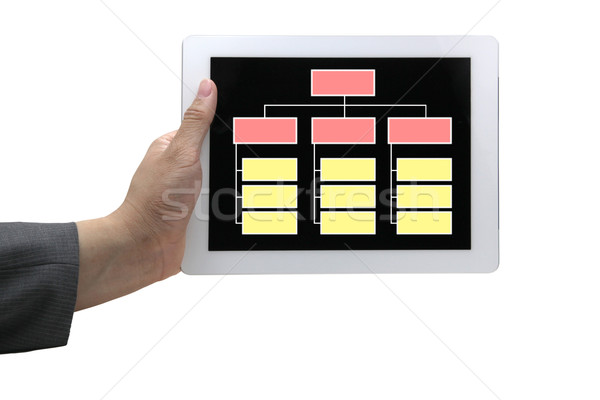 empty organization chart online Stock photo © vichie81