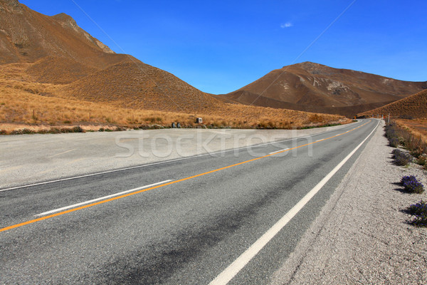Lindis Pass New Zealsnd Stock photo © vichie81