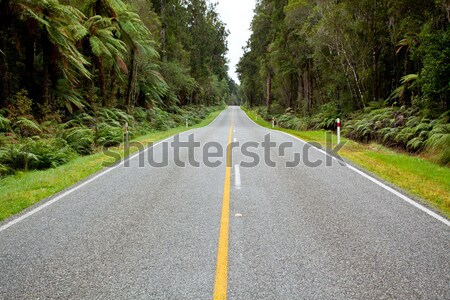 Empty road stretching out Stock photo © vichie81