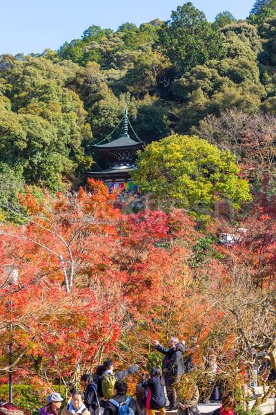 Tapınak kyoto sonbahar Japonya ağaç bahçe Stok fotoğraf © vichie81