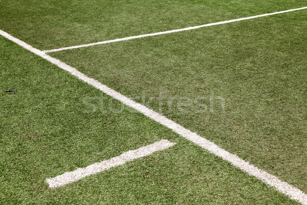 white line on soccer football field Stock photo © vichie81