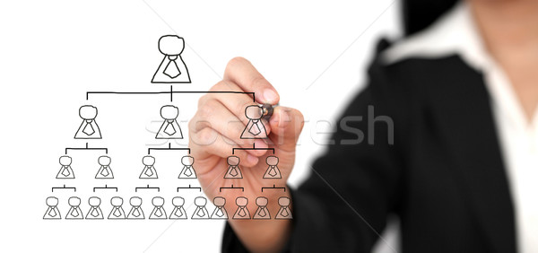 Organization Chart Business Building Concept Stock photo © vichie81