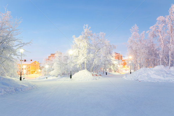 Winter landscape City Garden Stock photo © vichie81