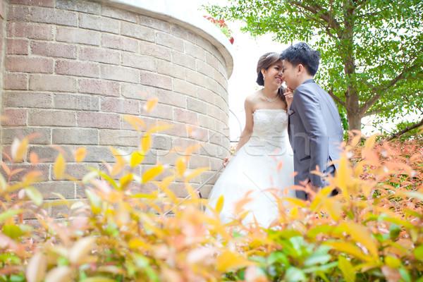Stok fotoğraf: çiftler · öpüşme · portre · mutlu · romantik · yeni · evliler