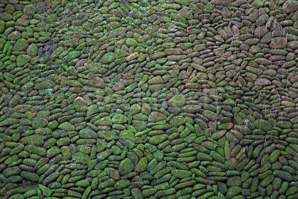 Verde musgo parede de tijolos tradicional pedra Foto stock © vichie81